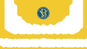 Logo Champagne Vincent BENNEZON